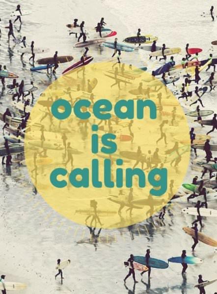 Ocean is calling.