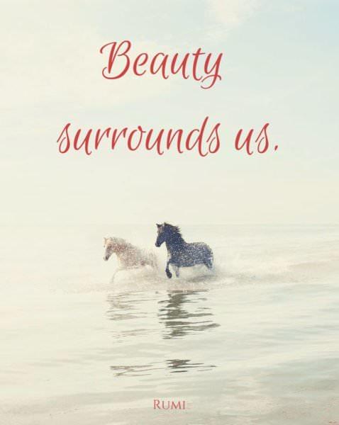 Beauty surrounds us.