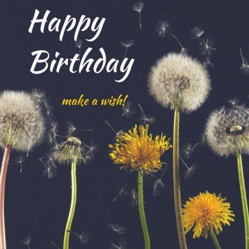 Happy Birthday Make a Wish