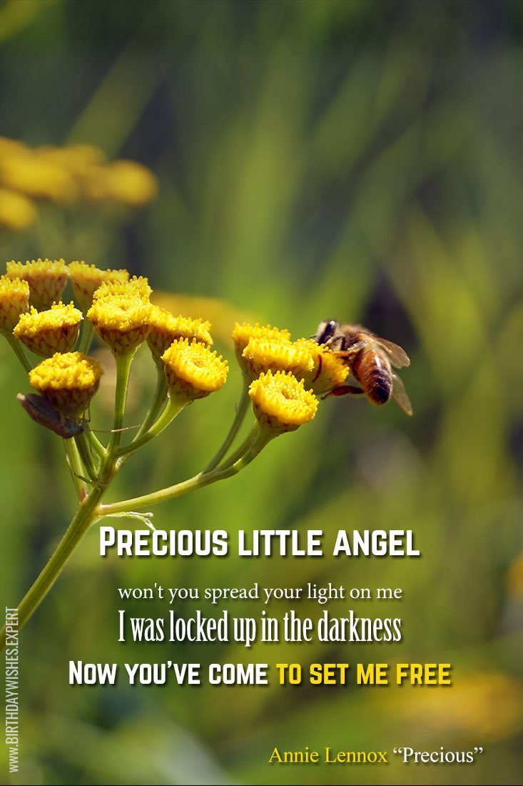 Precious-Little-Angel