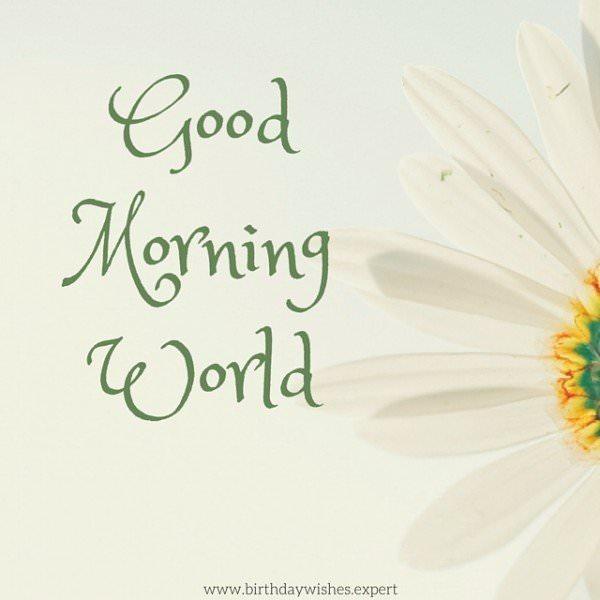 Good Morning World.