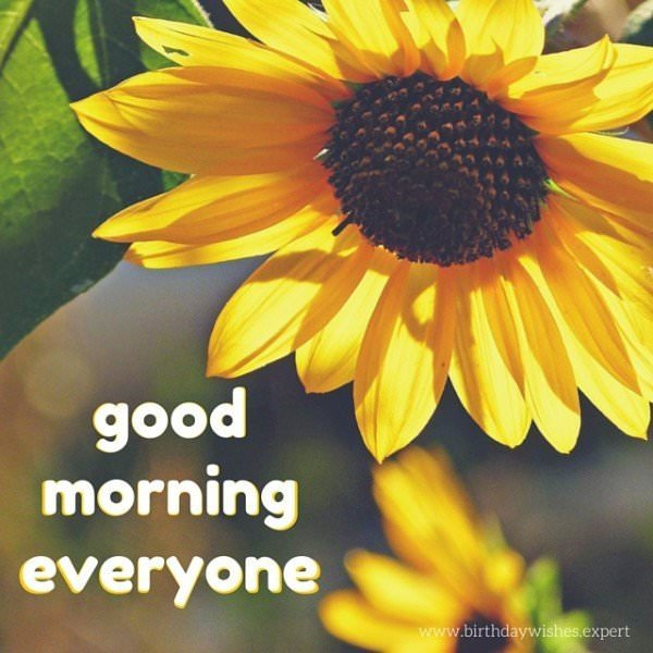 Good morning, everyone.
