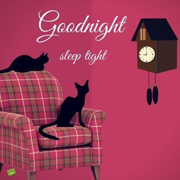 Good night. Sleep tight.