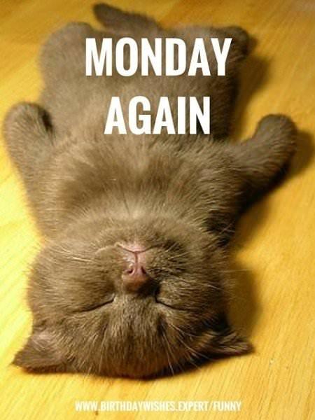 Monday again.