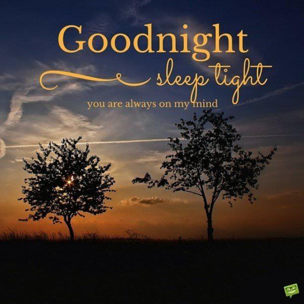 Good night. Sleep tight. You are always on my mind.