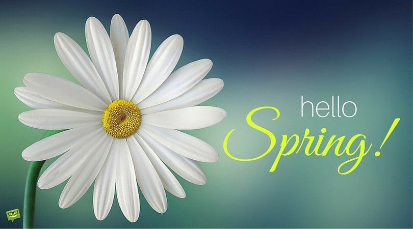 Hello, Spring.