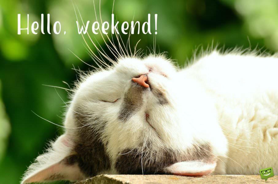 Hello, weekend!