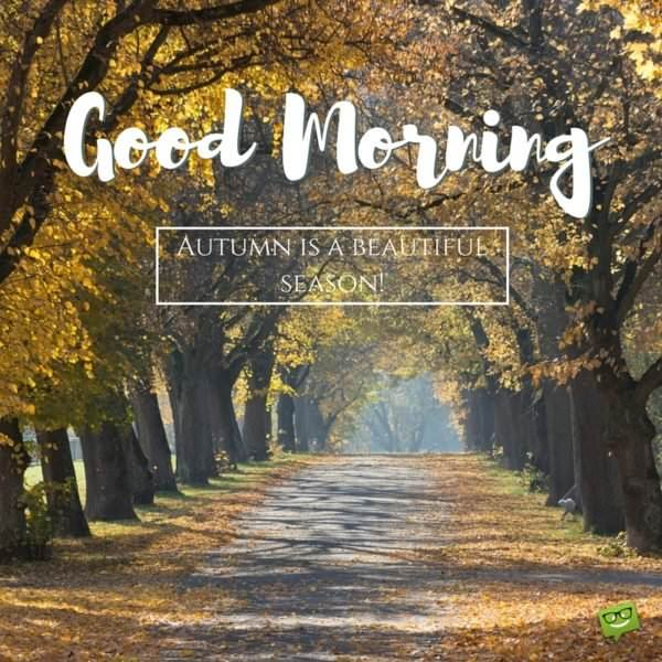 Good Morning. Autumn is a beautiful season.