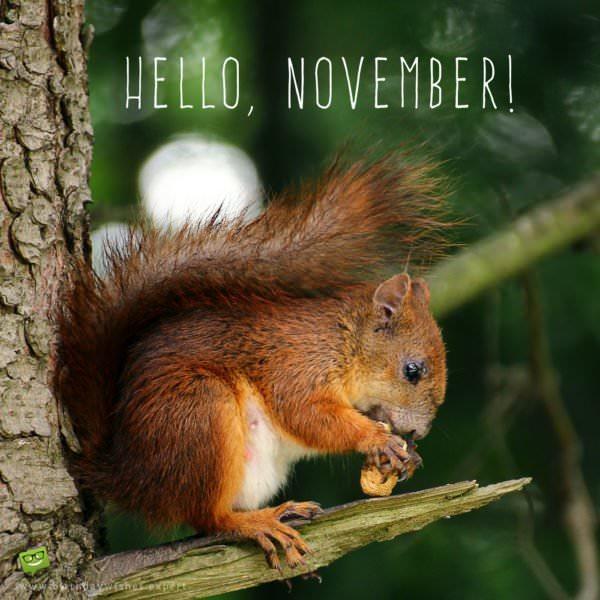 Hello, November.
