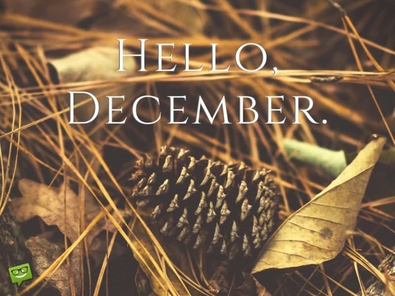 Hello, December.