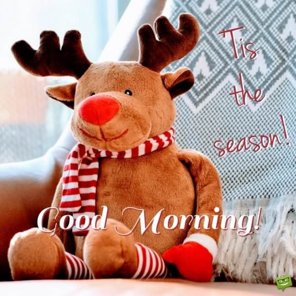Good Morning. 'Tis the season!