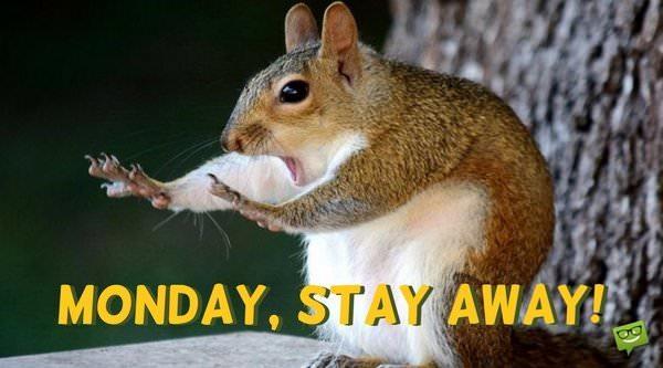 Monday, stay away.