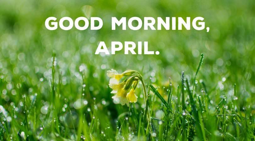 Good morning, April.